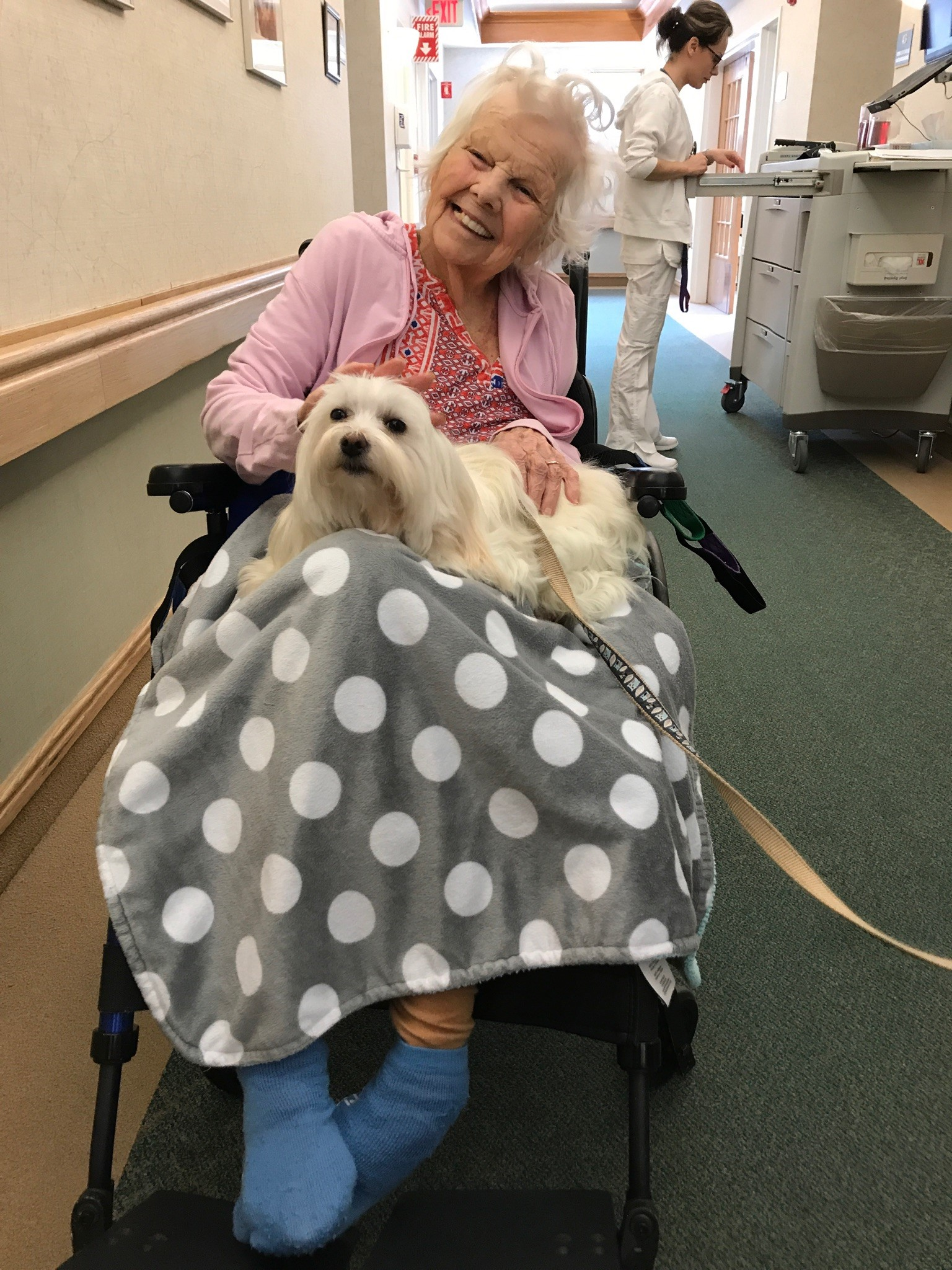 Pet Visits and Animal Therapy